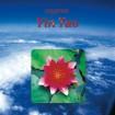 Yin Tao