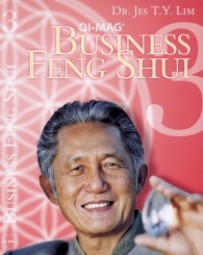 Feng Shui 3 Business